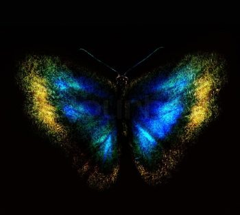 Fluturele este o inspiratie pentru multe culori, numai culorile unui fluture ne inspira la lucruri marete si frumoase.Fluturele reinvie totul la viata.